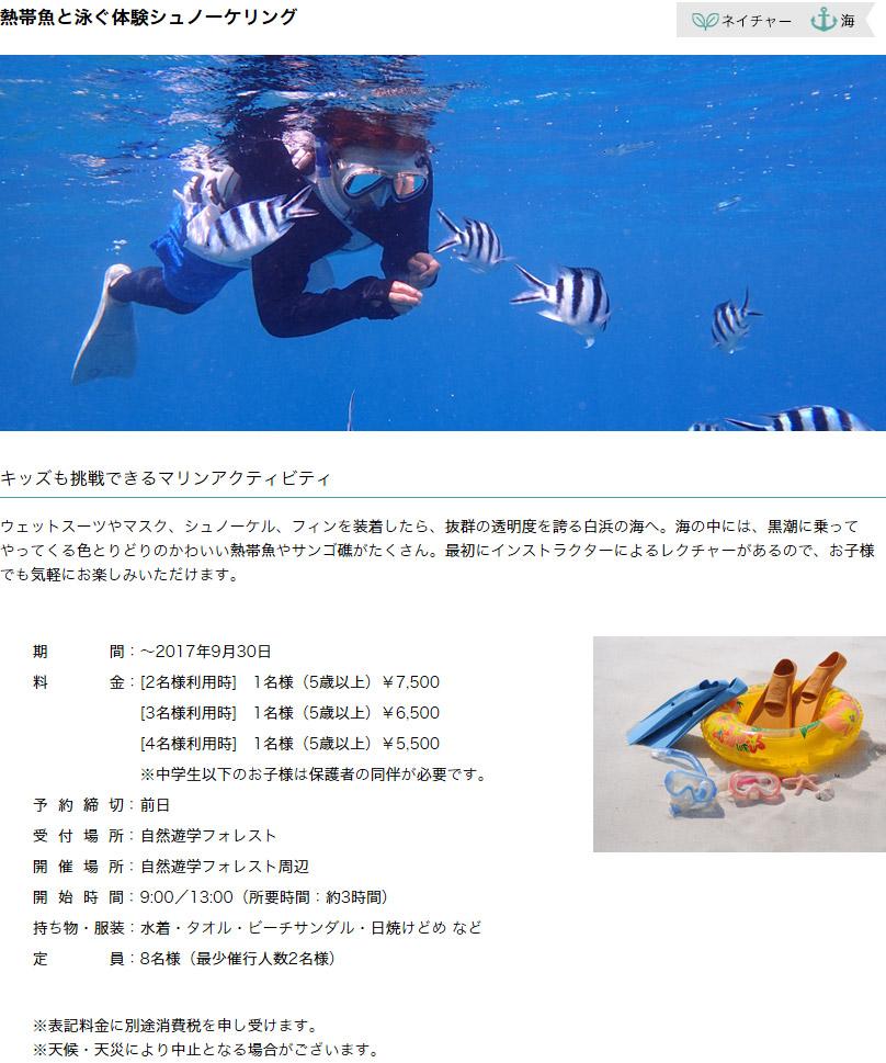 熱帯魚と泳ぐ体験シュノーケリング